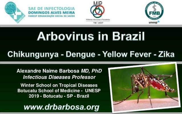 Alexandre Naime Barbosa MD, PhD Infectious Diseases Professor Winter School on Tropical Diseases Botucatu School of Medici...