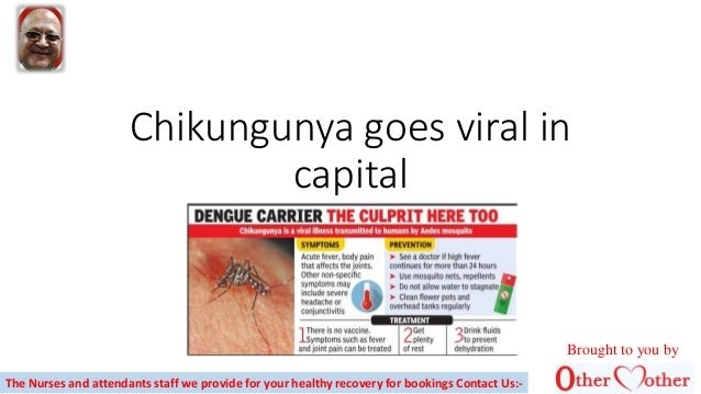 Chikungunya goes viral in capital The Nurses and attendants staff we provide for your healthy recovery for bookings Contac...