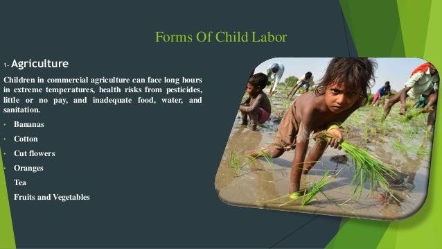 child labour in india pdf