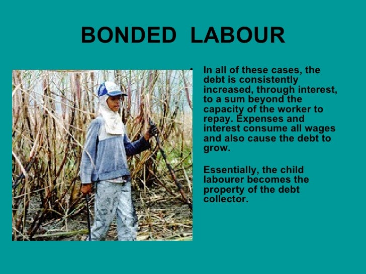 Sociology essay on child labour