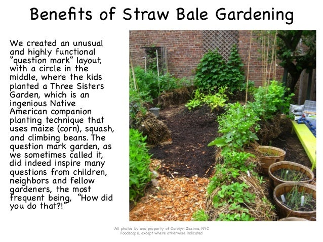 How to Use Straw Bales to Create a Diverse, Safe and Fertile Raised G…