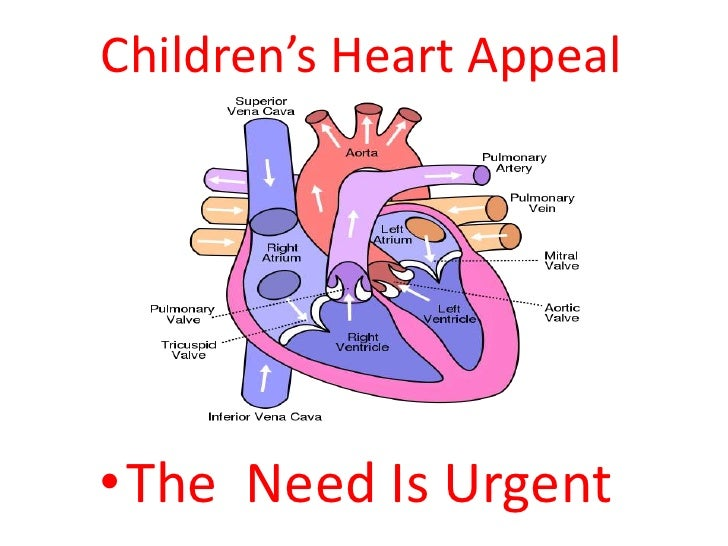 Children's Heart Appeal     • The Need Is Urgent