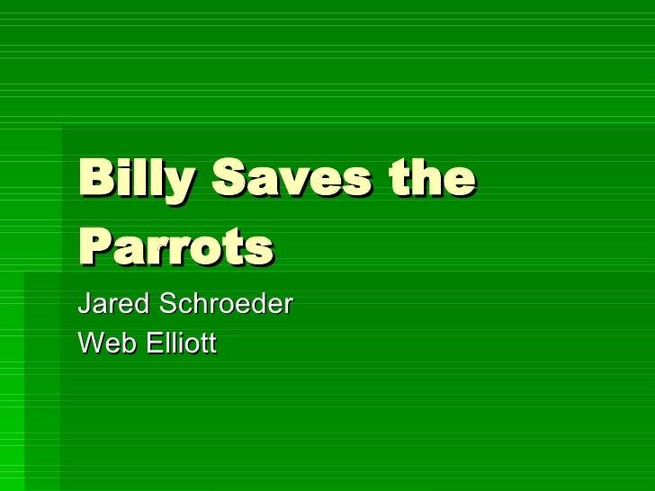 Billy Saves the Parrots Jared Schroeder Web Elliott