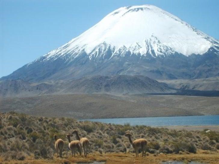 Chile Slide 2