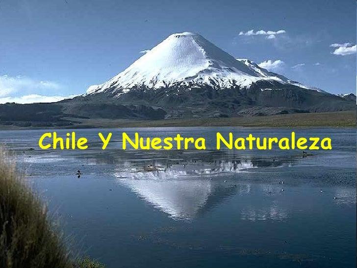 Chile Y Nuestra Naturaleza
