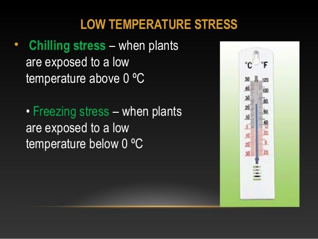 Abiotic plant stress. Ppt video online download.