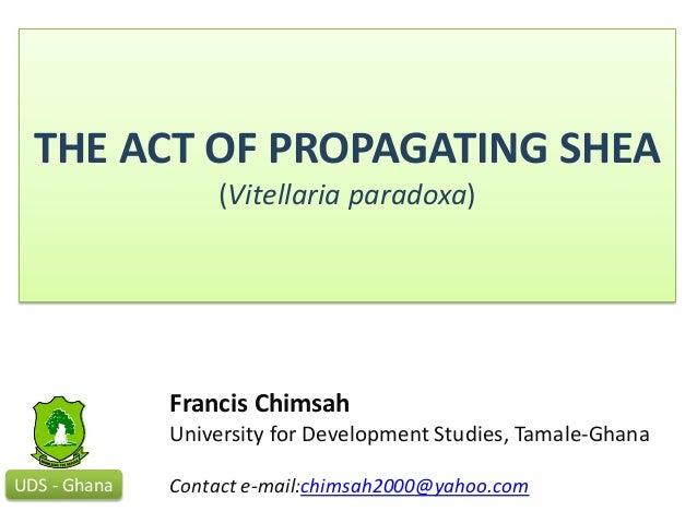 THE ACT OF PROPAGATING SHEA(Vitellaria paradoxa)UDS - GhanaFrancis ChimsahUniversity for Development Studies, Tamale-Ghana...