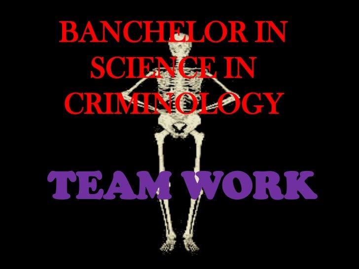BANCHELOR IN  SCIENCE INCRIMINOLOGYTEAM WORK