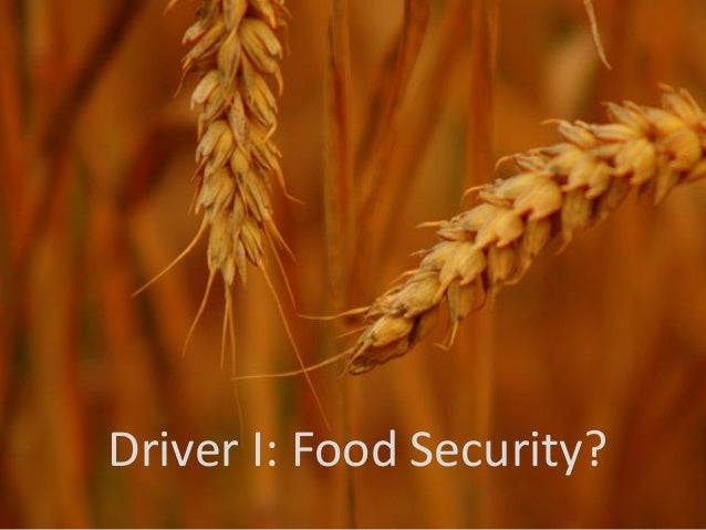 Driver I: Food Security?
