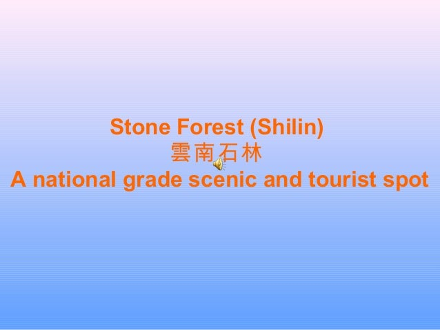 Stone Forest (Shilin) 雲南石林 A national grade scenic and tourist spot