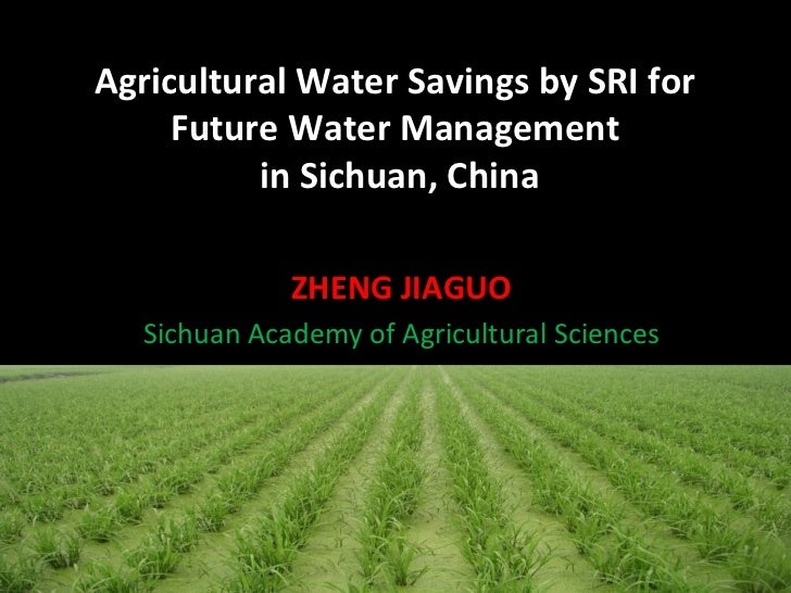 Agricultural Water Savings by SRI for     Future Water Management          in Sichuan, China              ZHENG JIAGUO   S...