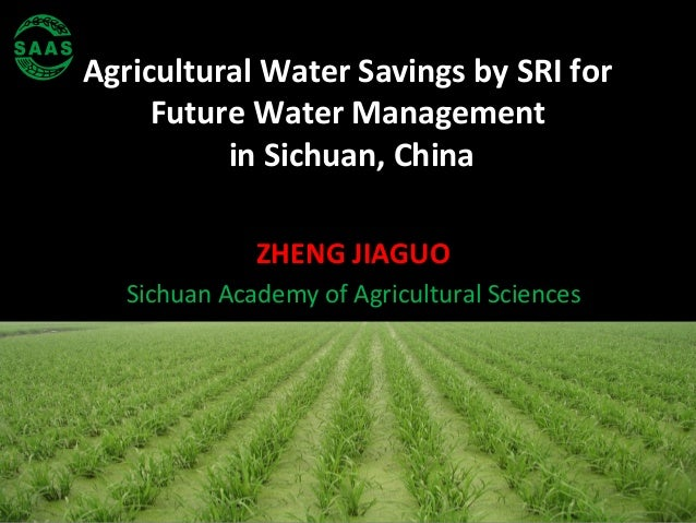 Agricultural Water Savings by SRI for Future Water Management in Sichuan, China ZHENG JIAGUO Sichuan Academy of Agricultur...