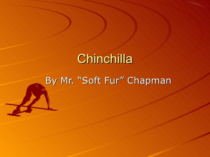 "ChinchillaBy Mr. ""Soft Fur"" Chapman"