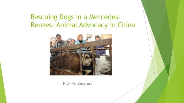 Rescuing Dogs in a Mercedes- Benzes: Animal Advocacy in China Nick Pendergrast