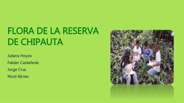 FLORA DE LA RESERVA DE CHIPAUTA Juliana Hoyos Fabián Castañeda Jorge Cruz Nicol Abreo