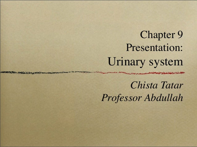 Chapter 9 Presentation: Urinary system Chista Tatar Professor Abdullah