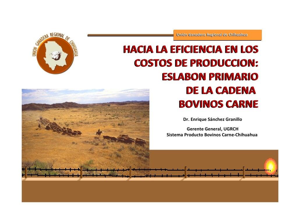 Unión Ganadera Regional de Chihuahua   HACIA LA EFICIENCIA EN LOS   COSTOS DE PRODUCCION:        ESLABON PRIMARIO         ...