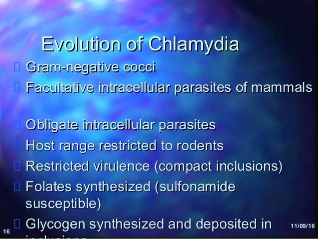 chlamydia host chlamydia Chlamydia trachomatis (ct) infection is the commonest bacterial sexually  transmitted  usually, 48–72 hours after infection, the host cell bursts to release  the.