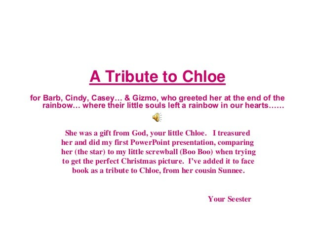A Tribute to Chloe for Barb, Cindy, Casey… & Gizmo, who greeted her at the end of the rainbow… where their little souls le...