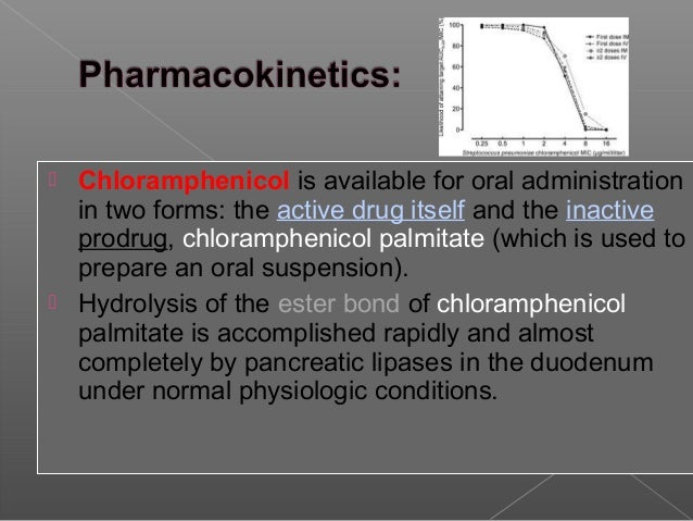 Chloramphenicol Palmitate Solubility