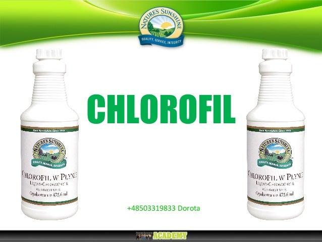 CHLOROFIL +48503319833 Dorota
