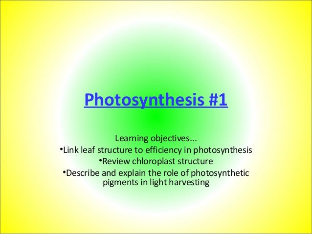 Photosynthesis #1 Learning objectives... •Link leaf structure to efficiency in photosynthesis •Review chloroplast structur...