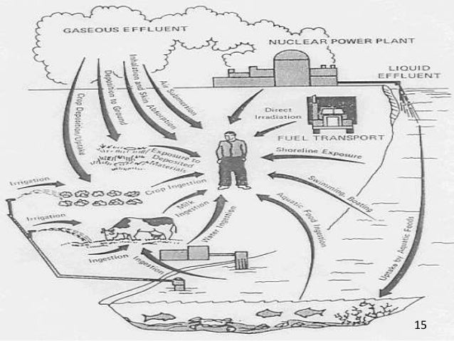 effect of hazards waste in the environment by reja