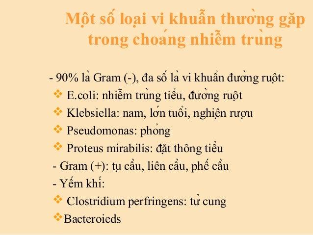 Một số loại vi khuẫn thường gặp trong choáng nhiễm trùng - 90% là Gram (-), đa số là vi khuẩn đường ruột: ...