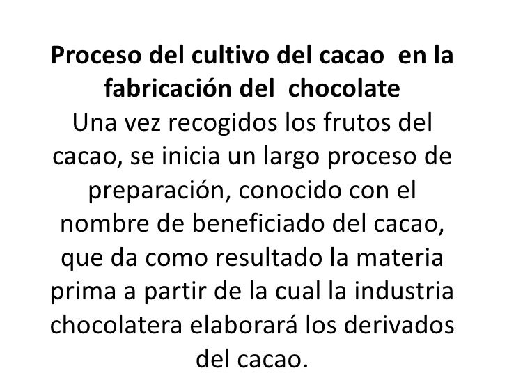 chocolate. Proceso del cultivo del cacao  en la  fabricación del  chocolateUna vez recogidos los frutos del cacao, se i...