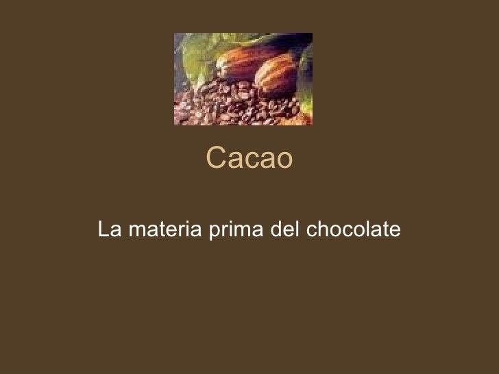 Cacao La materia prima del chocolate