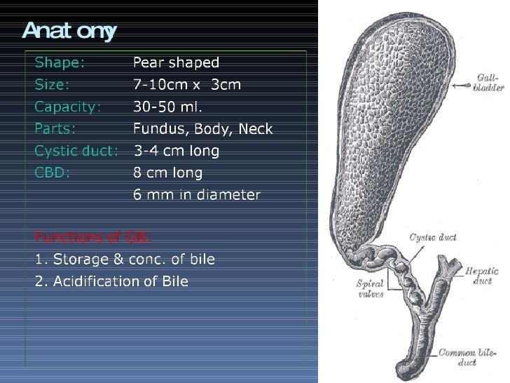 Cholecystitis Slide 2