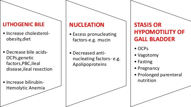 Cholelithiasis Slide 3