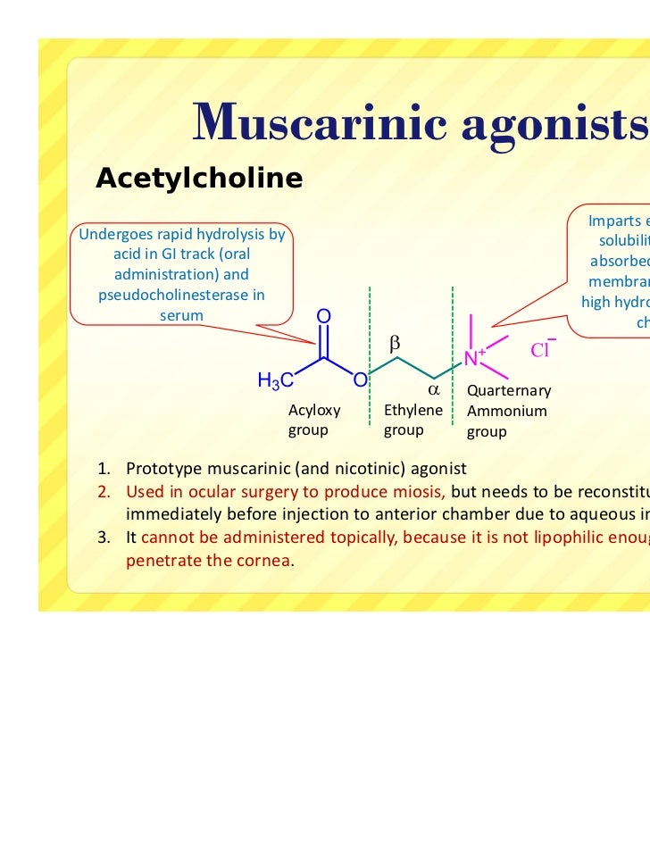 Cholinergic agonists - medicinal chemistry updated