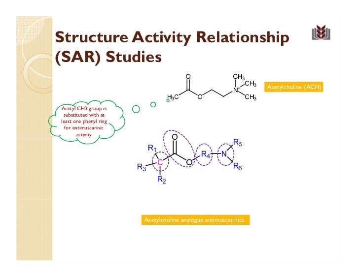 structure activity relationship of cholinergic agonist