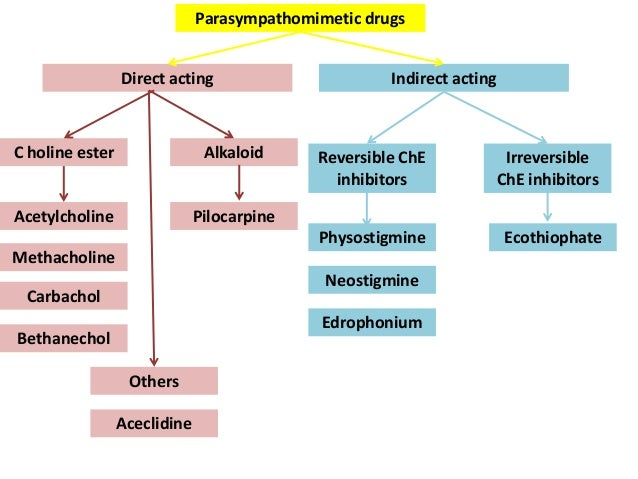 Cholinergic Drugs and Anticholinesterases in Optometry