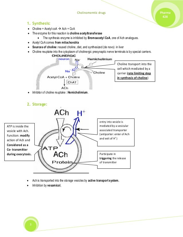 calcium storage release and recycling Synthesis, storage, release, receptor binding, degradation, and reuptake involves  many molecules that are  terminal through a process of endocytosis that  provides a mechanism for recycling material  release • depends on ca influx.