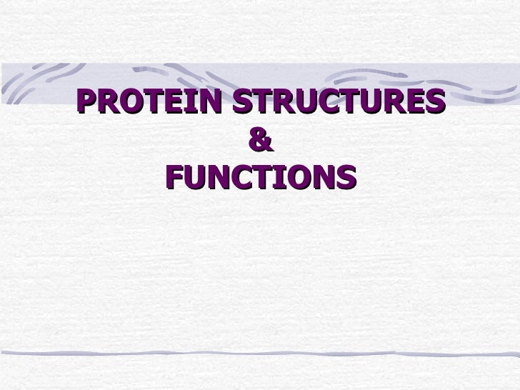 PROTEIN STRUCTURES & FUNCTIONS