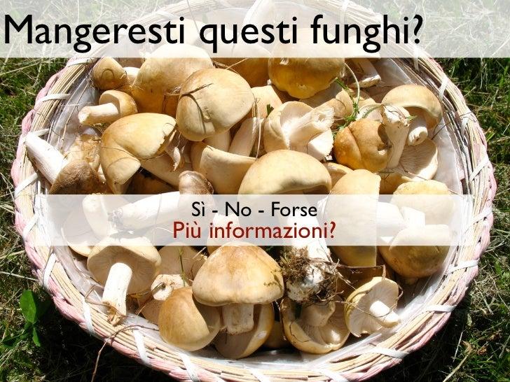 Mangeresti questi funghi?           Sì - No - Forse          Più informazioni?
