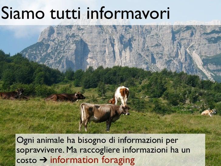 Siamo tutti informavori  Ogni animale ha bisogno di informazioni per  sopravvivere. Ma raccogliere informazioni ha un  cos...