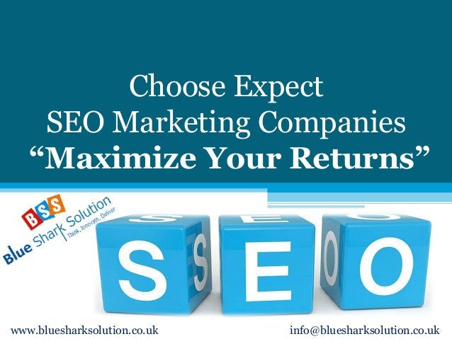 "Choose Expect SEO Marketing Companies ""Maximize Your Returns"" www.bluesharksolution.co.uk info@bluesharksolution.co.uk"