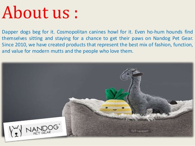Choose the best luxury cat bed for your cat at nandog pet