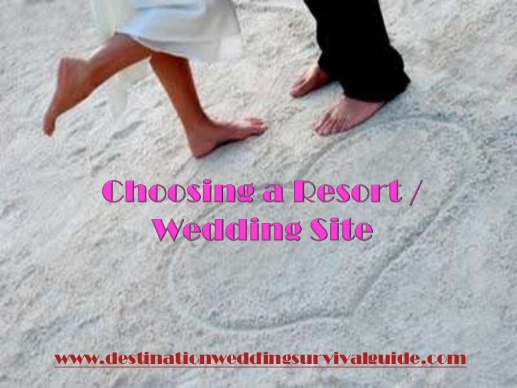 www.destinationweddingsurvivalguide.com