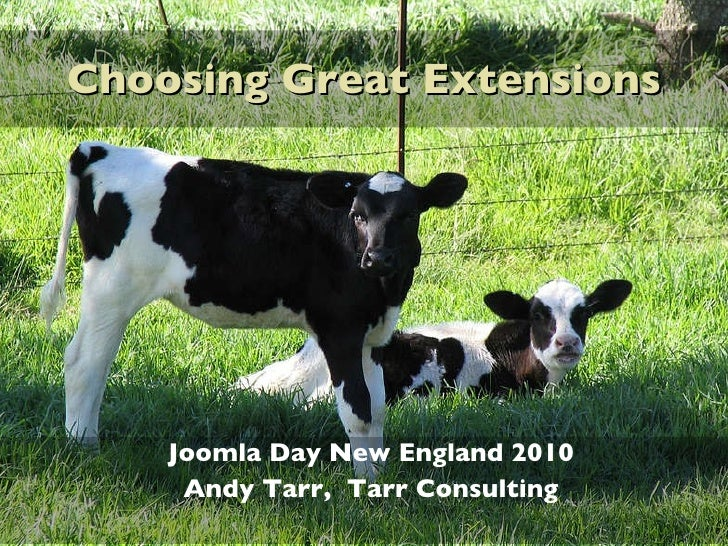 Choosing Great Extensions<br />Joomla Day New England 2010<br />Andy Tarr,  Tarr Consulting<br />