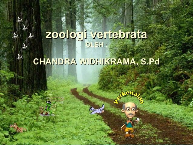 zoologi vertebrata         OLEH :CHANDRA WIDHIKRAMA, S.Pd