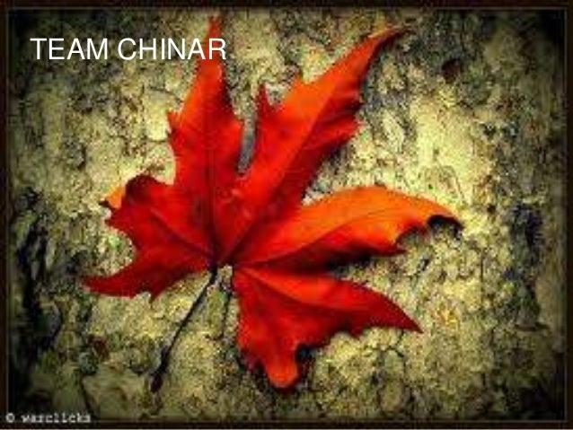 TEAM CHINAR