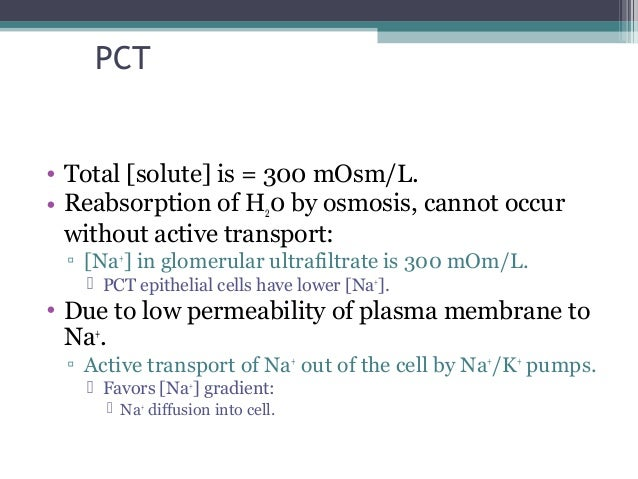 PCT • Total [solute] is = 300 mOsm/L. • Reabsorption of H20 by osmosis, cannot occur without active transport: ▫ [Na+ ] in...