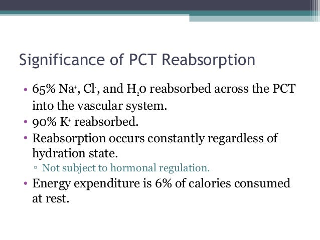 Significance of PCT Reabsorption • 65% Na+ , Cl- , and H20 reabsorbed across the PCT into the vascular system. • 90% K+ re...