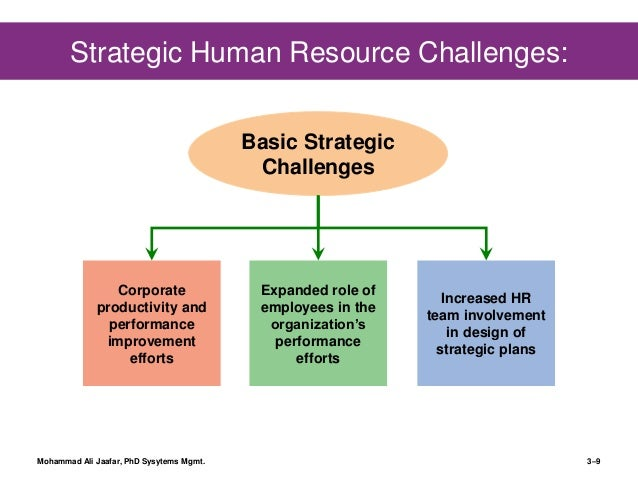 human resource management strategy A human resource management system or hris (human resource information  system) is a  on the whole, these erp systems have their origin from software  that  in the future, human resources management software is expected to.