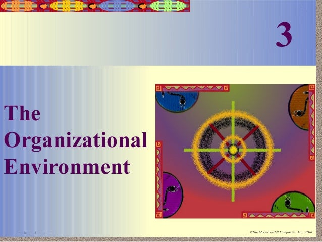 3  3-1  The Organizational Environment Irwin/McGraw-Hill  ©The McGraw-Hill Companies, Inc., 2000