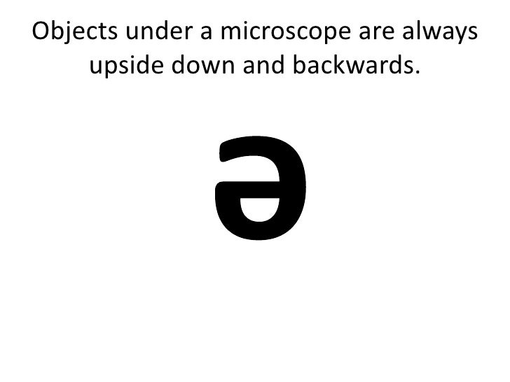 Objects under a microscope are always    upside down and backwards.